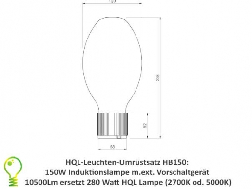 induction light conversion kit for existing 300W mercury-vapour lamps